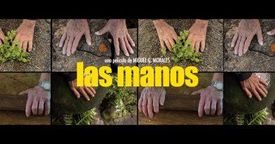 Documentary Las Manos in the Auditorium of Jameos del Agua