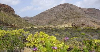 Geführtes Wandern auf Lanzarote